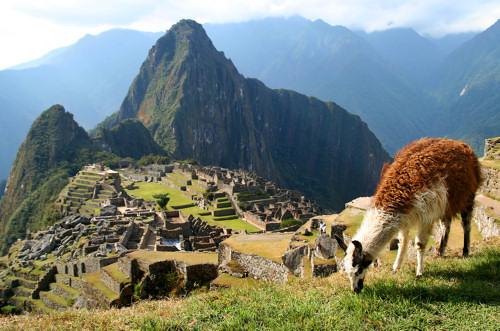 Bs_Lama_And_Machu_Picchu_5220755