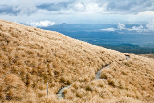 Alpine Crossing Tongariro National Park New Zealand