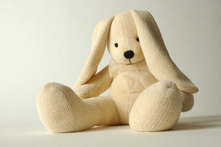 Bs_stuffed_animal_Bunny__301438