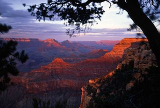Bs_Grand_Canyon_South_656769