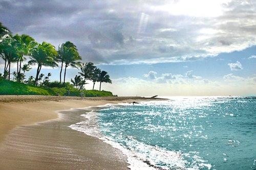 Beach in Kauai, Hawaii